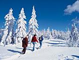 Wanderung durch die Winterlandschaft des Bayerischen Waldes