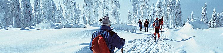 Winterlandschaft im Bayerischen Wald